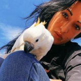 Passione Pappagalli  Free Flight