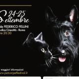 Il mondo animale e le sue storie del cuore protagonista della IV edizione del Pet Carpet Film Festival